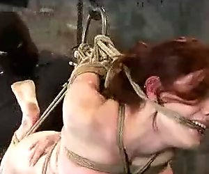 Hogtied and ass hooked Iona Grace flogged