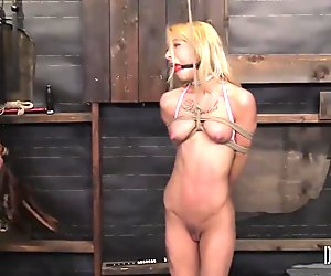 Kenzie Reeves - Dungeoncorp BDSM - A Fine Piece of Bound Meat 1