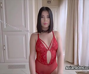 Submissive Asian happily sucks masters cock